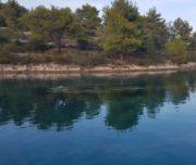 blue-lagoon-solta-tour-split-trogir-02