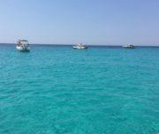 blue lagoon tour split